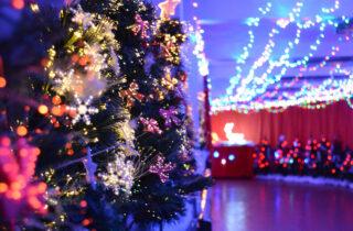 Santa Trains Christmas Lights